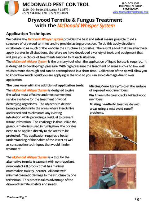 Drywood Termite Fungas Treatment