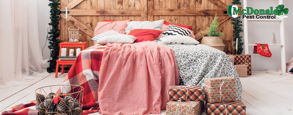 Keep-Bed-Bugs-Away